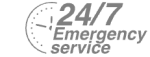 24/7 Emergency Service Pest Control in Grove Park, SE12. Call Now! 020 8166 9746
